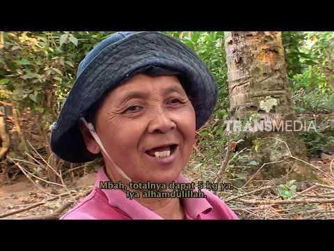 ORANG PINGGIRAN - CERITA PILU DARI LERENG KELUD (7/9/17) 3-2