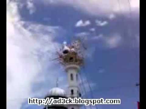 Mucjiso: Masjidka allahu akbar.flv