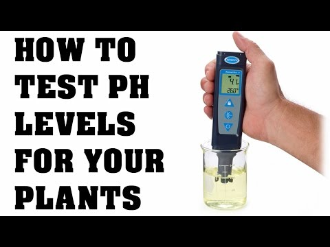 How to Test and adjust pH levels in your water for your Grow Room