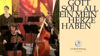 J.S. Bach - Cantata BWV 169 - Gott soll allein mein Herze haben - 5 - Aria (J. S. Bach Foundation)