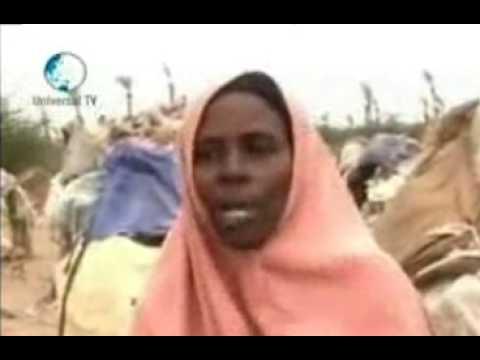 ... qarxis siigo pulsitemeter com somali paltalk qarxis siigo welcome to