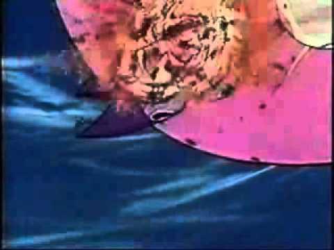 The Final Battle , Duke Fleed , Grendizer video