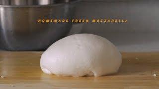 도전! 집에서 모짜렐라 치즈 만들기 : Homemade Fresh Mozzarella | Honeykki 꿀키