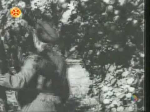 Щит джургая  мегаэнциклопедия кирилла и мефодия