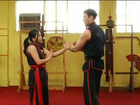 Advanced Wing Tsun Techniques : Wing Tsun Tan Sau & Pak Sau Drills Image 1