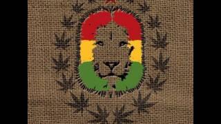 One Lion - Babylon Town Balkan Regae Connection