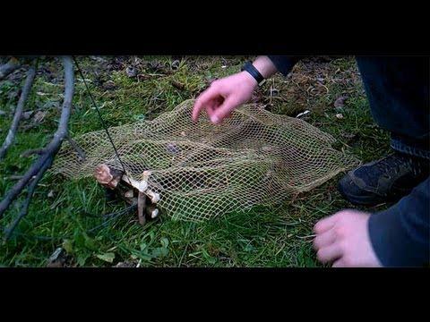 Abssupervivencia explicaci n de la trampa para cazar conejos vivos youtube - Trampas para ratones de campo ...