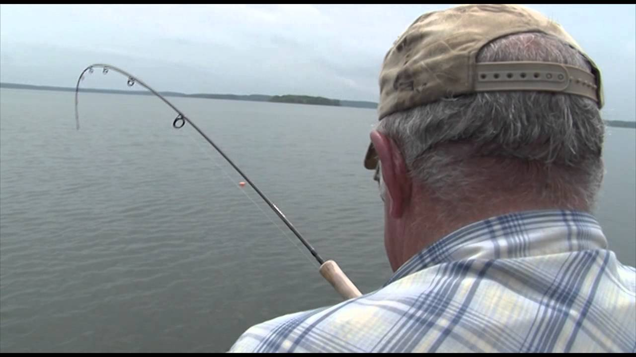 Crappie bass walleye fishing w anglers midwest on stockton for Stockton fishing report
