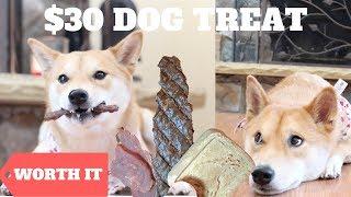 $3 Dog Treat vs. $30 Dog Treat [WORTH IT]