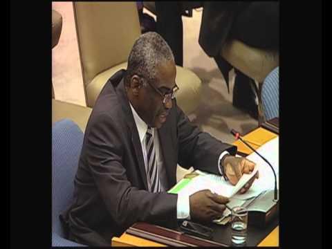 """UN""""s Role in Mali"""