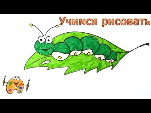 Видео как нарисовать гусеницу