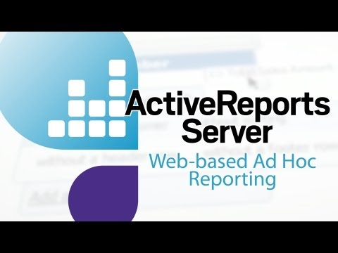 15 Seconds: 100% Web-based Ad Hoc Reporting for Business Users
