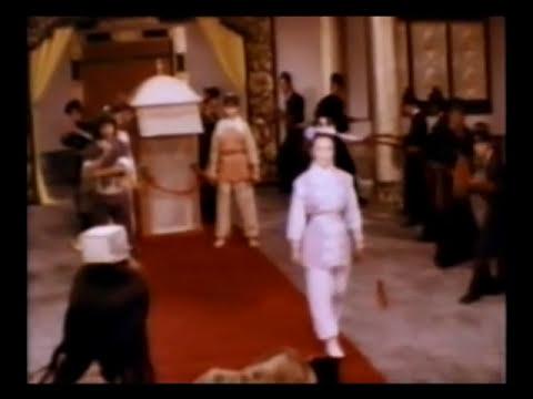 Los Magnificos Guardaespaldas (pelicula - Jackie Chan - 1978 - kung fu,artes marciales)