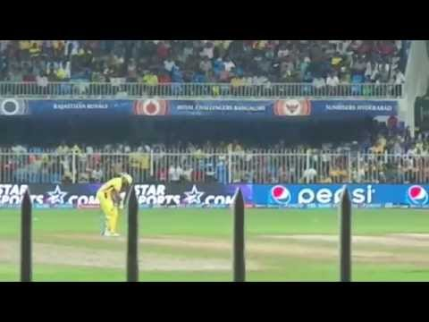 CSK vs SH Ravindra Jadeja batting in ipl 2014