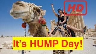 "Bix Weir: Wednesday is ""Hump Day!"""