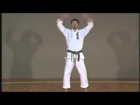 10 KATA Shotokan   Slow Motion