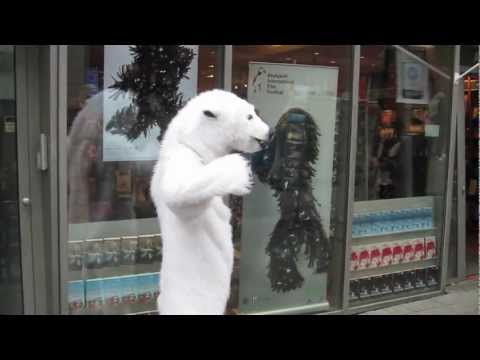 Polar Bear Attack in Iceland