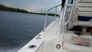 Boat, 2 mercury engines 250hp each optimax