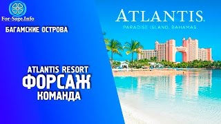 FOR-SAGE.INFO 🍀 Команда в Atlantis Resort Bahamas 🌴 Багамы