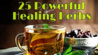 21 Powerful Healing herbs that you can use everyday | effective home remedies