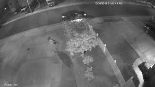 Thieves breaking into garages Orangecrest California