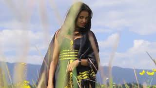 Yemeskerem Adey -  Misganaw  Bogale New Ethiopian Music Video