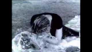 Madonna Video - Madonna - Cherish (Video)
