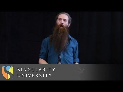 Aubrey de Grey - In Pursuit of Longevity