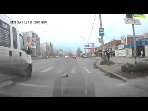 Испугали пешика )