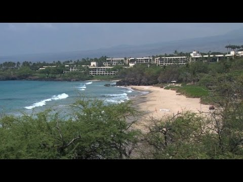Shark attacks snorkeler in Hawaii