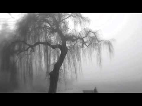 L. Janá�ek, In the Mists (V mlhách); II. Molto Adagio