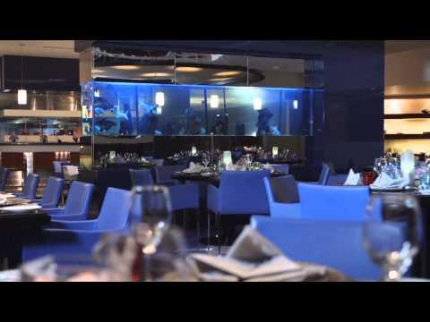 Fusion Restaurant | Le Méridien Al Khobar Hotel