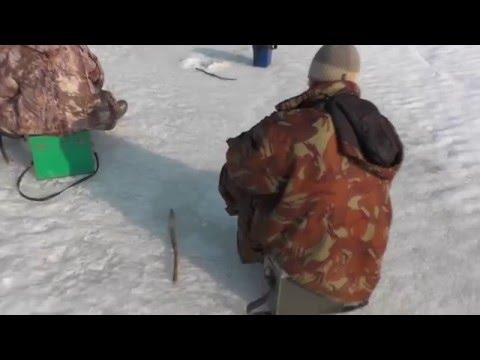 козьмодемьянск рыбалка видео