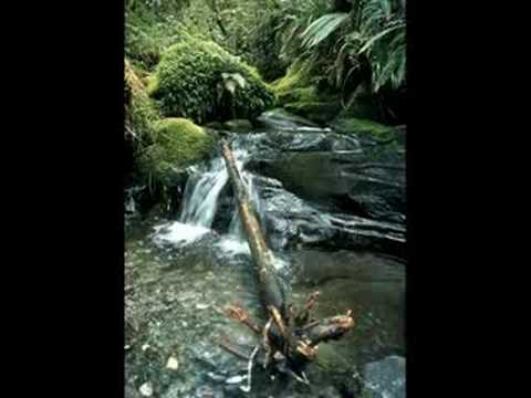 RELAXATION - Relaxing Waterfalls (Free Full Download) Video
