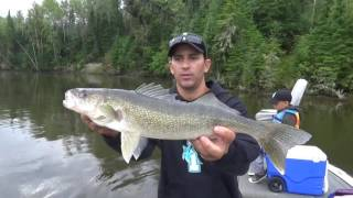 download lagu Carolina Rig For Walleye Fishing gratis