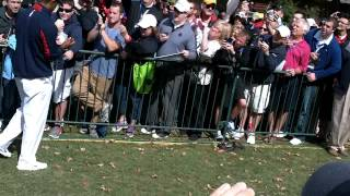 Tiger Woods News Nice Guy