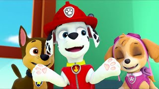 PAW Patrol – The Best of Friends (Friendship Day Song) (part 1) (North American English)