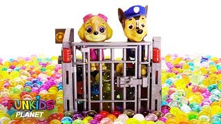 Paw Patrol Get the Pups Out of Jail with Orbeez & Fidget Spinner - Learn Colors Videos For Kids