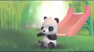 panda's love...... (Bangla)