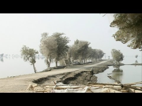 Nature S Weirdest Events Episode