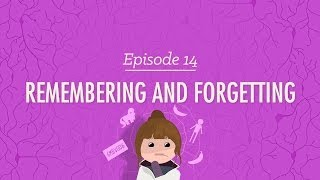 Remembering and Forgetting - Crash Course Psychology #14