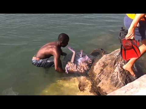 Sirenas reales encontradas vivas (2)