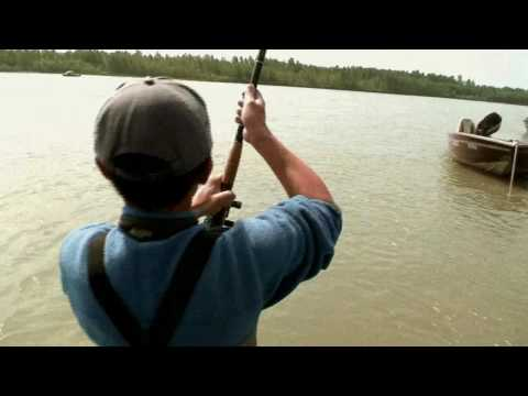 Fraser River barfishing for salmon, part three