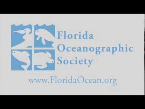 Florida Oceanographic PSA