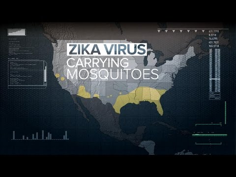 New Fears About the Zika Virus