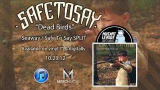 Watch Safe To Say Dead Birds video