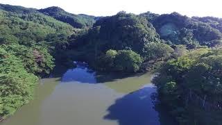 福島県伊達市の沼シリーズ お林沼
