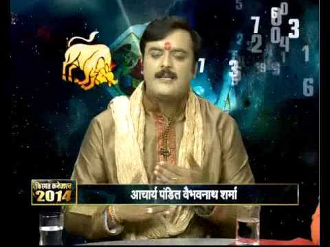 2014 Astrology, Hindi Rashiphal, Horoscope Year Prediction