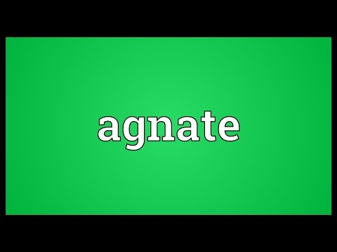 Header of agnate