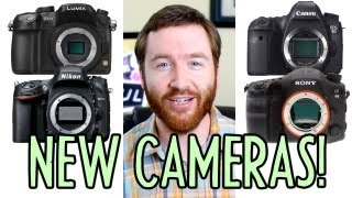Camera-palooza! NEW Panasonic GH3, Canon 6D, Nikon D600, Sony a99! : Indy News